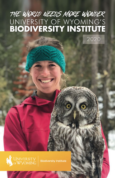 Cover image of the 2020 University of Wyoming Annual Report and Link to the Document in PDF form